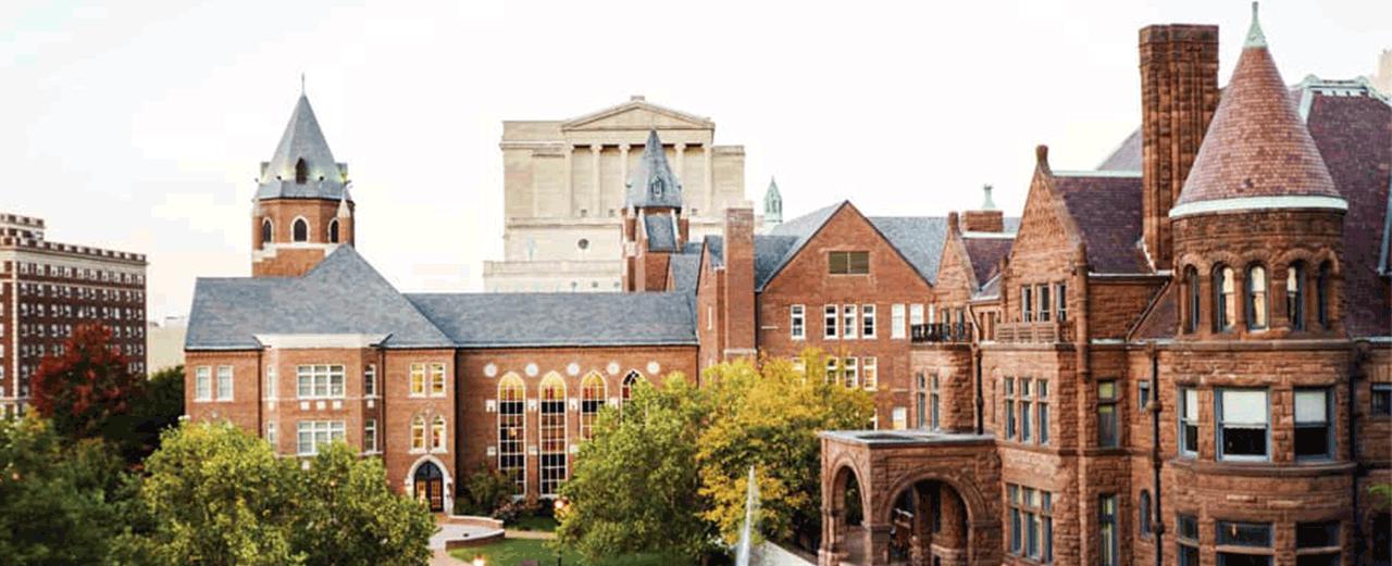 saint louis university uddannelse udlandet