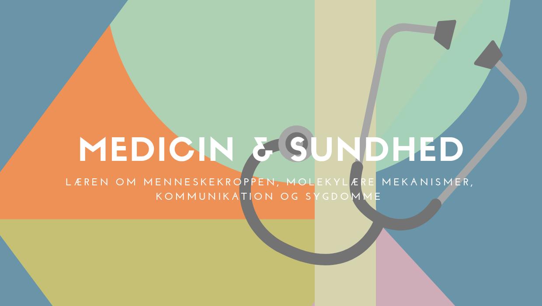 laes medicin sundhed i udlandet universitet fag uddannelse study abroad